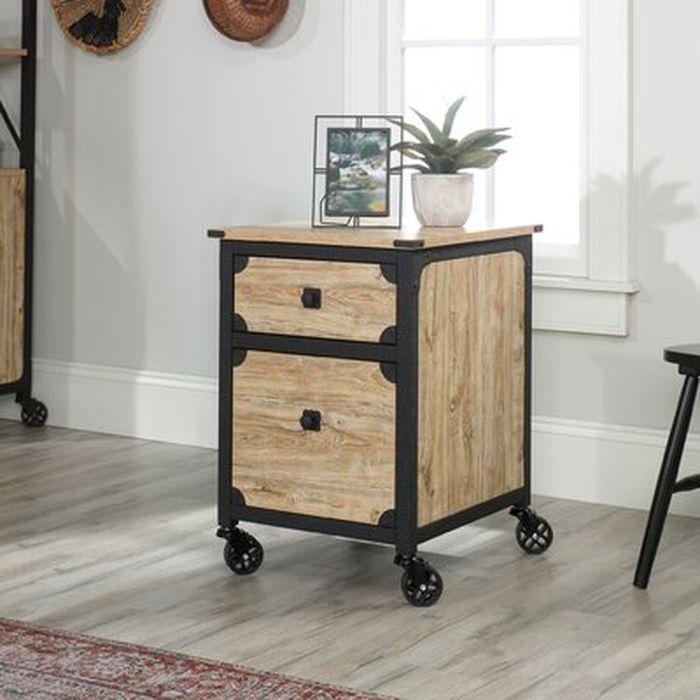 Rushton 2 Drawer Mobile Vertical Filing Cabinet Wayfair