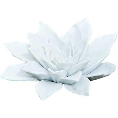 """1.75"""" H Bisque White Porcelain Succulent - Wayfair"""