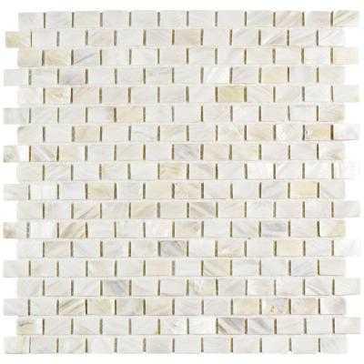 Conchella Subway Natural Seashell Mosaic Wall Tile - Home Depot