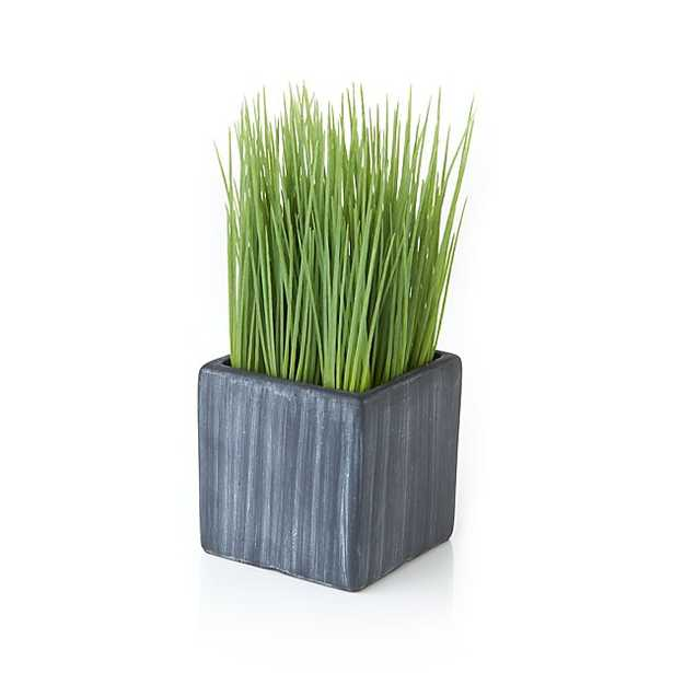 Mini Potted Artificial Grass - Crate and Barrel