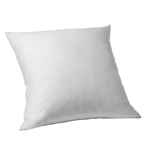 "Decorative Pillow Insert - Feather - 24""sq. - West Elm"