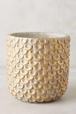 Gilded Scalloped Pot, Large - Anthropologie
