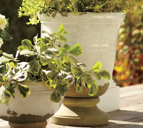 TUSCAN PLANTERS - Pottery Barn