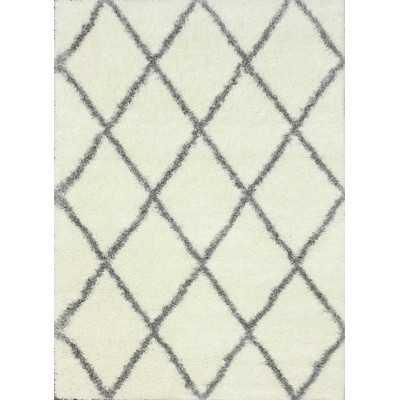 Shag Grey & White Shag Area Rug - Wayfair