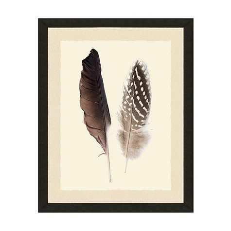 """Nature's Plume Art - 24"""" x 20"""" - Framed - Ballard Designs"""