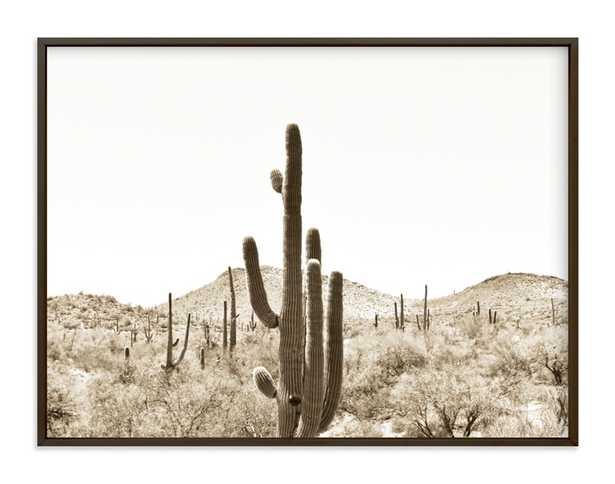 "Cacti V Art Print- 40x30"", print in matte brass frame - Minted"