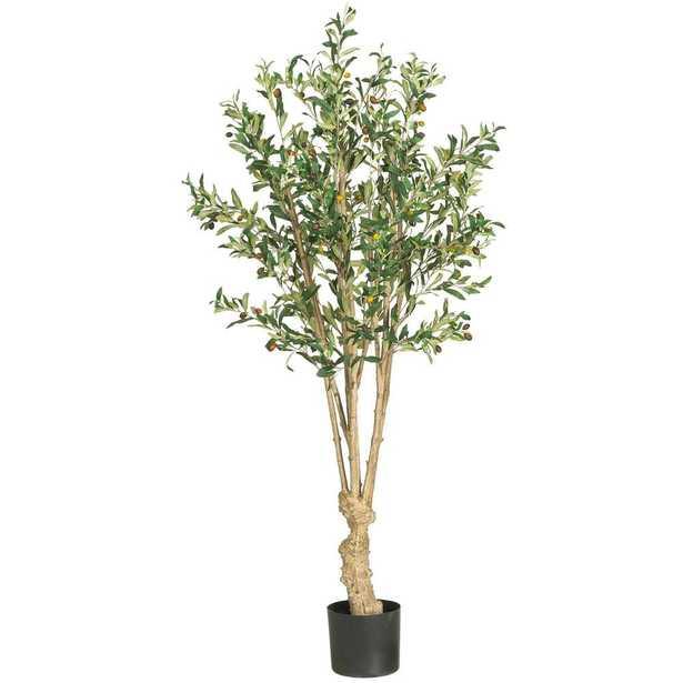 5' Olive Silk Tree - Fiddle + Bloom