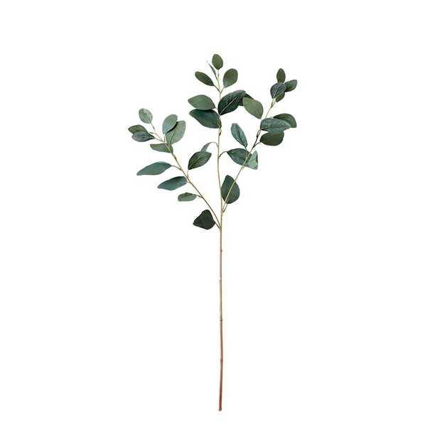 Eucalyptus Stem - Wayfair