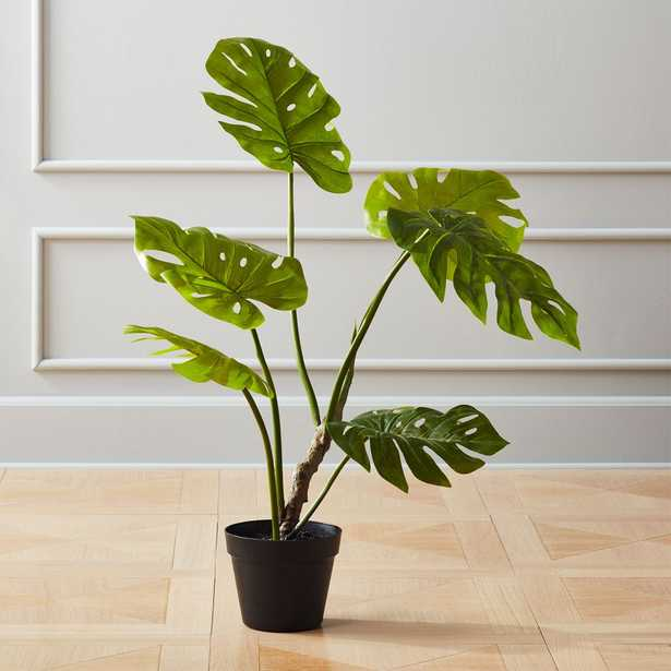 Faux Potted Monstera Plant - CB2