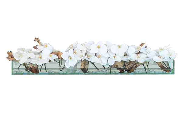 "Orchids Floral Arrangements in Planter / White / 24""W - Wayfair"