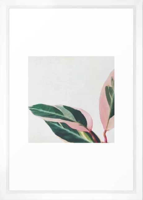 Pink Leaves II Framed Art Print - Society6