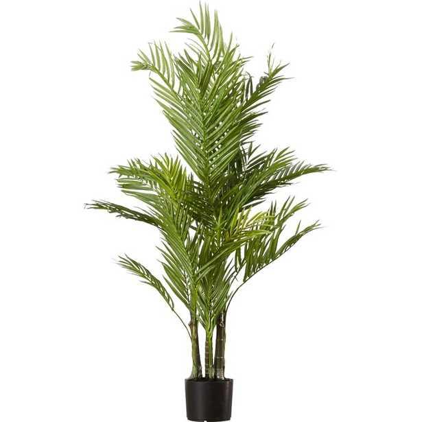 Areca Palm Tree in Pot - AllModern