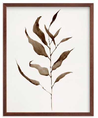 Eucalyptus Foliage 11x14, Natural Frame- Eucalyptus Vintage - Minted