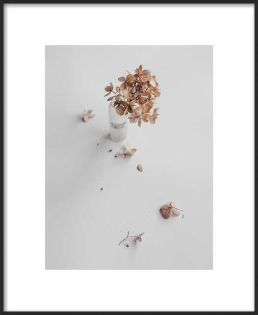 Dried Flower  BY HILDE MORK - Artfully Walls