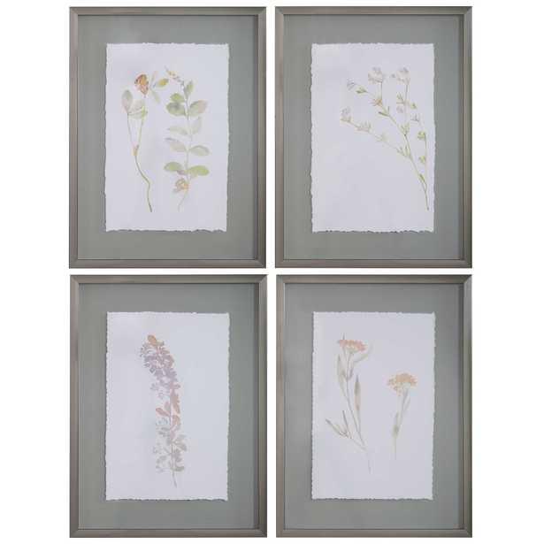 Flourish Framed Botanical Prints S/4 - Hudsonhill Foundry