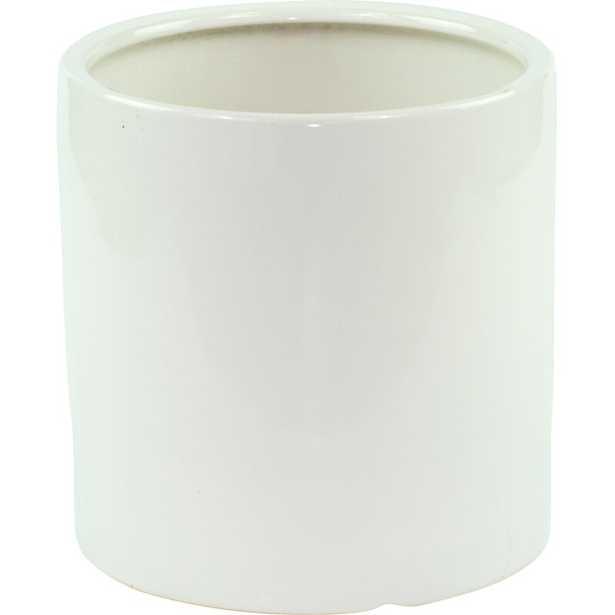 Alida Desk Top Ceramic Pot Planter - Wayfair