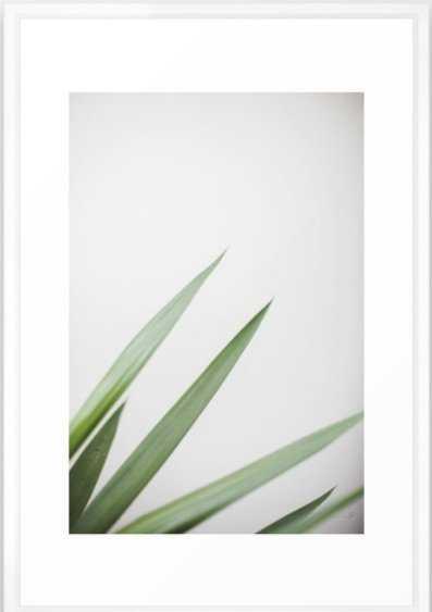 Plant Framed Art Print 15 x 21 - Society6