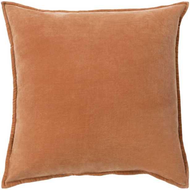 Eduarda Velvet Cotton Throw Pillow Cover - AllModern