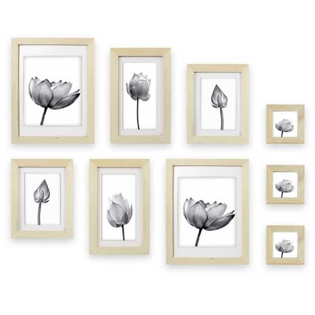 9 Piece Renfrow Fall Gallery Collage Picture Frame Set - Wayfair
