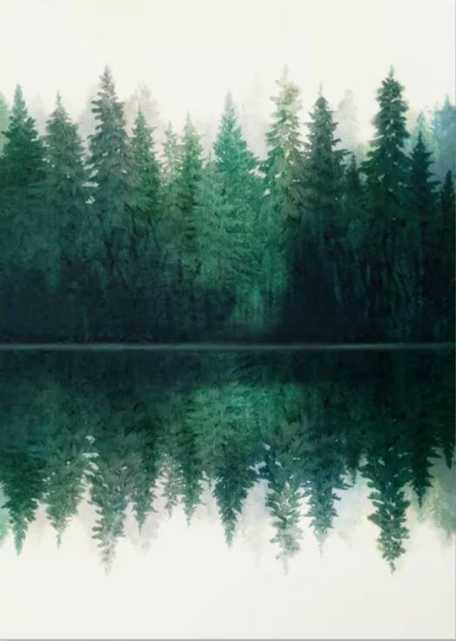Reflection Canvas Print - Society6