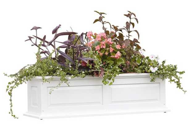Strine Wood Planter Box - Wayfair