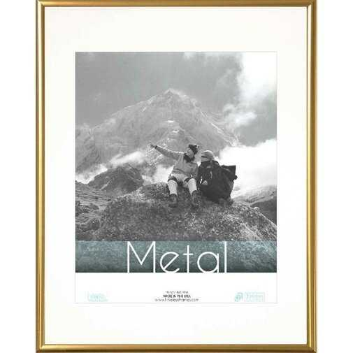 Hollman Metal Picture Frame - Wayfair