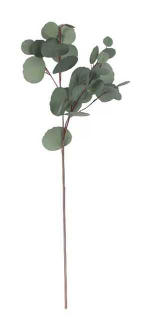 Artificial Eucalyptus Round Leaf Stem (3) - Wayfair