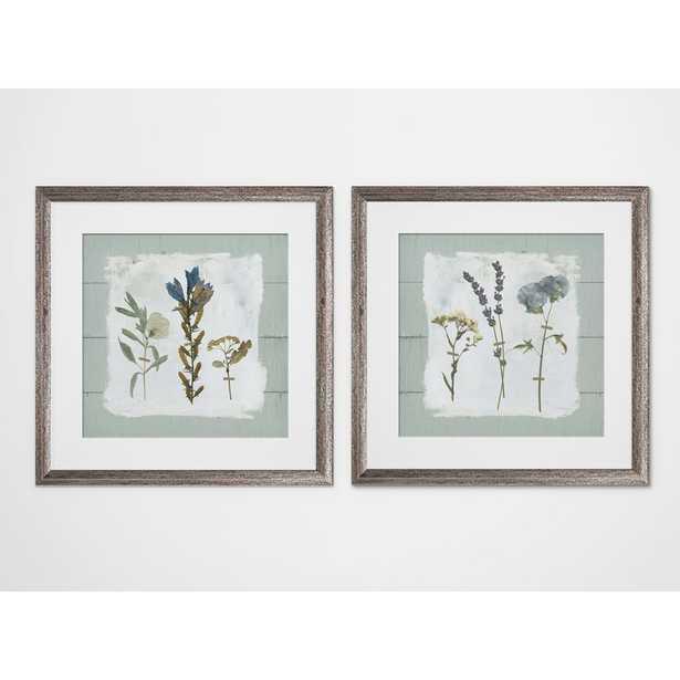 'Pressed Flowers on Shiplap' 2 Piece Framed Print Set - Birch Lane