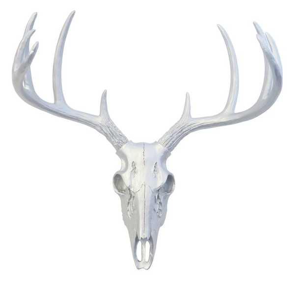Faux Taxidermy Mini Deer Skull Wall Décor - Wayfair
