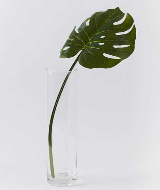 Faux Green Monstera Plant Leaf Stem - West Elm