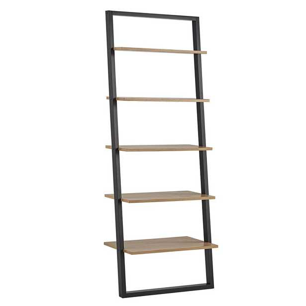 Theophanes 2 Tone Ladder Bookcase - Birch Lane