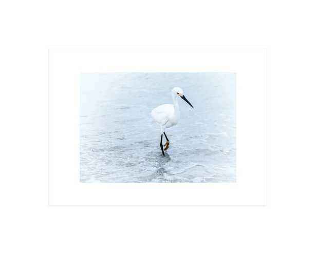 Strutting Bird on the Beach - Minted
