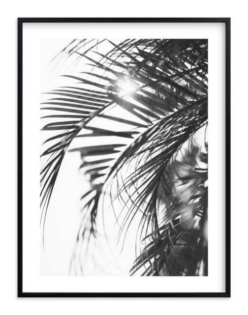 Palm 3 - Minted
