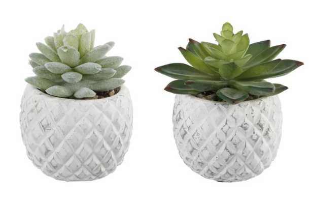 2 Piece Pineapple Succulent Desktop Plant in Pot Set - Wayfair