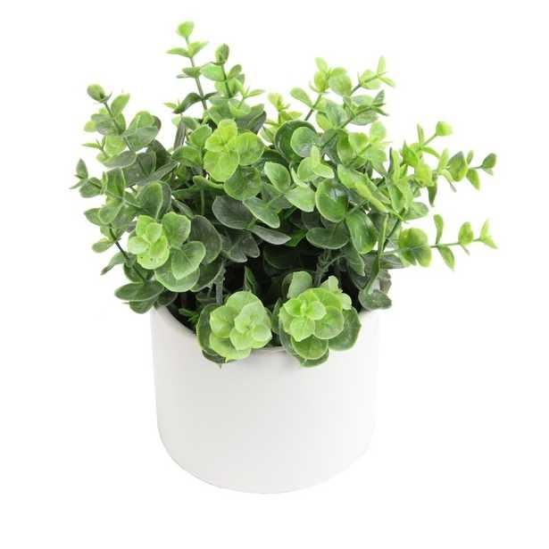 Artificial Eucalyptus Plant Centerpiece in Pot - Wayfair