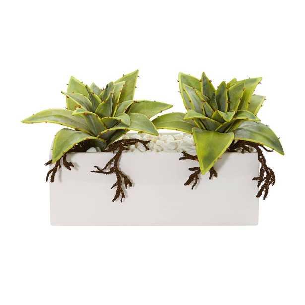 Succulent Artificial Plant in White Ceramic Vase - Fiddle + Bloom