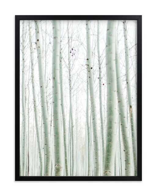 Quiet Poplars - Minted
