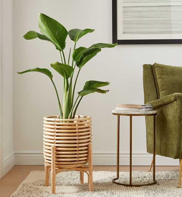 Adobe Rattan Planter - West Elm