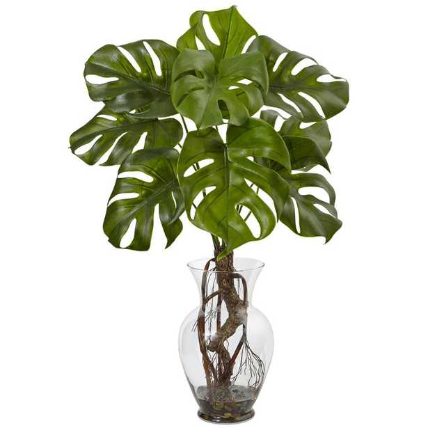 Monstera Plant with Vase - Fiddle + Bloom