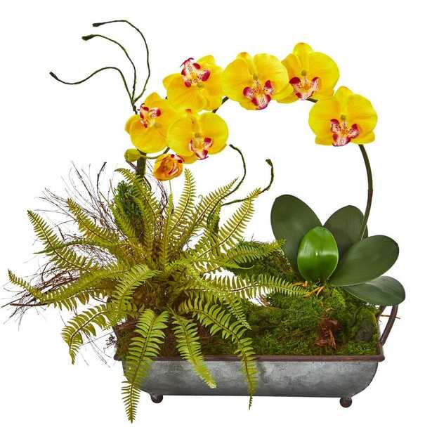 Phalaenopsis Orchid and Fern Artificial Mixed Floral Arrangement in Tray Planter - Wayfair