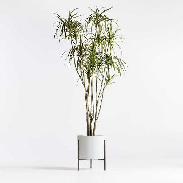 Artificial Potted Dracaena 6.5' - Crate and Barrel
