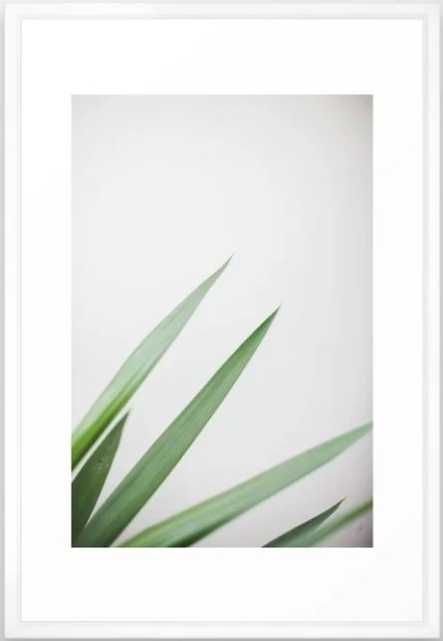 Plant Framed Art Print - 26x38 - Society6