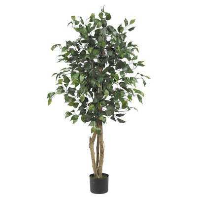 Parkes Silk Ficus Tree in Pot - Wayfair