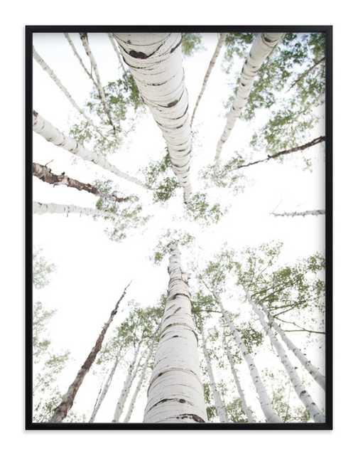 "aspens at altitude art prints-Wonderfully White, 30""x40"", Rich Black Wood Frame - Minted"