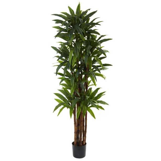 """Faux Dracaena Tree, 78"""" - Fiddle + Bloom"""