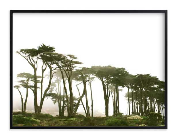 Lands End-olive green - Minted