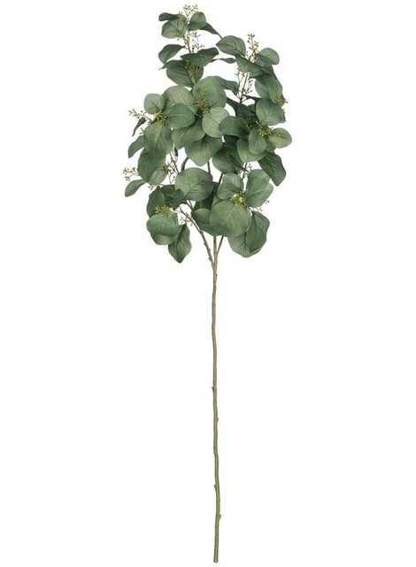 Eucalyptus Spray Stem - Wayfair