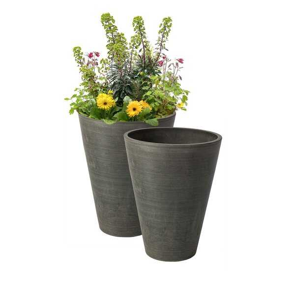 Bayley 2-Piece Self-Watering Composite Pot Planter Set (Set of 2) - Wayfair