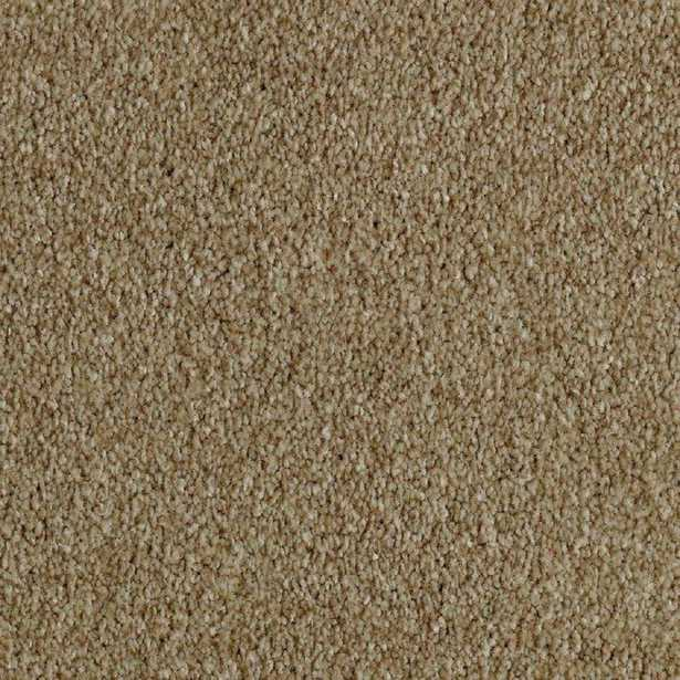 Phenomenal II - Color Ancestral Texture 12 ft. Carpet - Home Depot