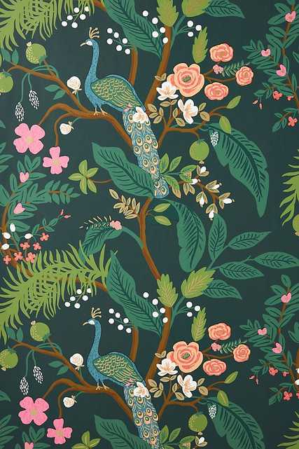 Rifle Paper Co. Peacock Wallpaper - Anthropologie